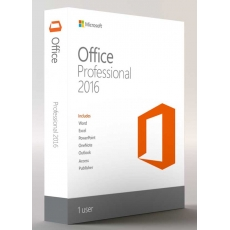 Office 2013 Professional